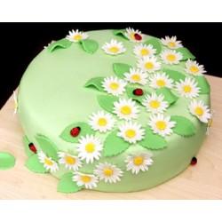 Торт детский  «Ромашковый Сад» 72KC